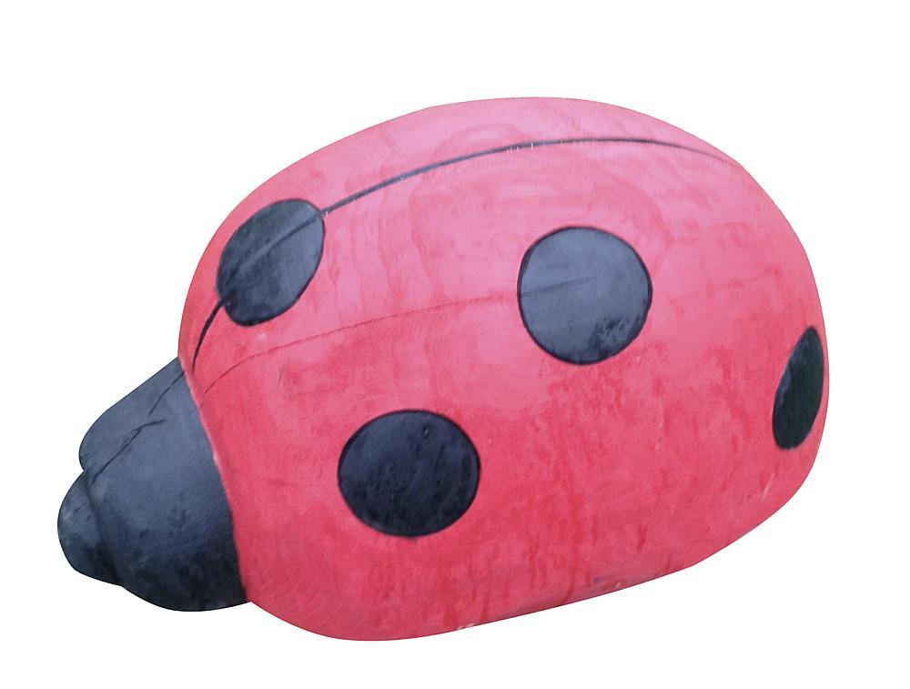 ladybeetle Naps