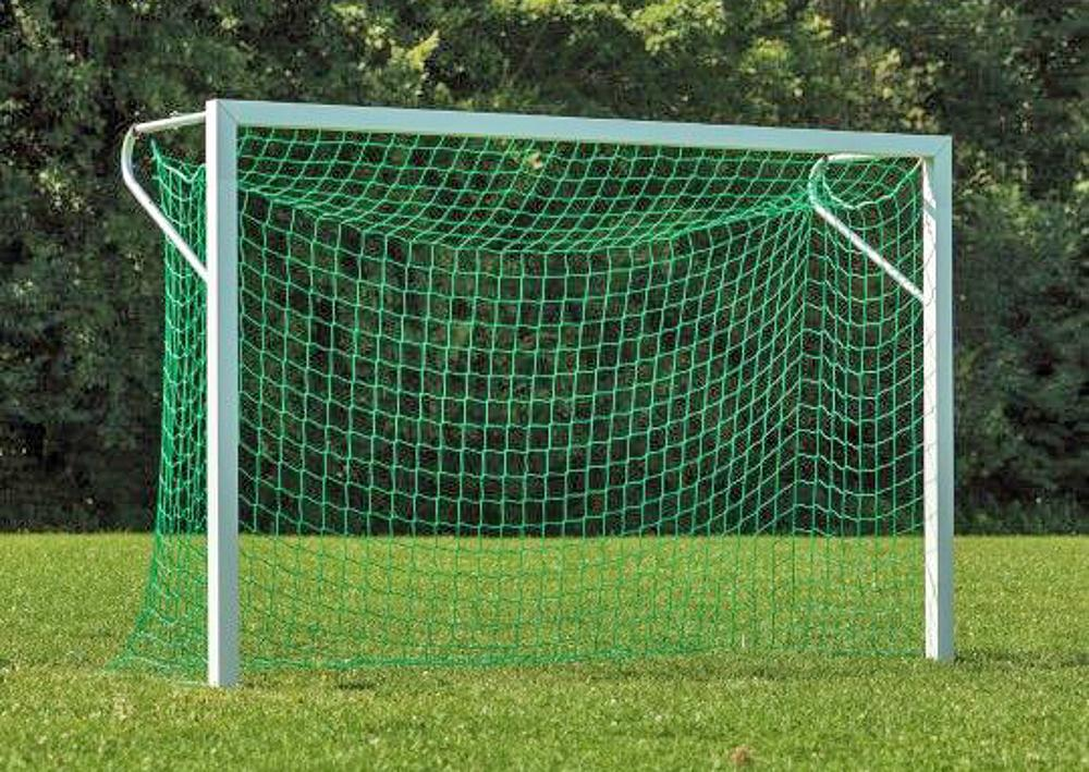 Net for small field goal
